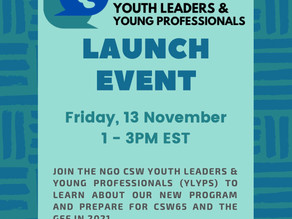 Youth Leaders and Young Professionals Launch Event