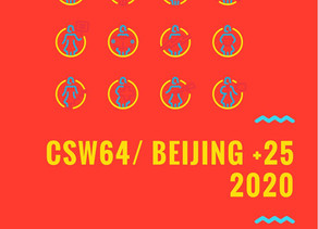 CSW64 Beijing Platform for Action 25 years on Women Re-Shaping Technology