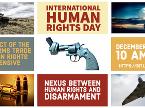 Human Rights and Disarmament Webinar