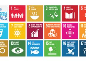 Report: Scotland the Sustainable Development Goals