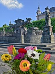 Klagenfurt und der Lindwurm