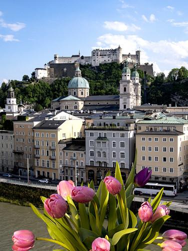 Salzburg mit Tulpen