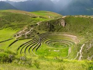 Peru Moray