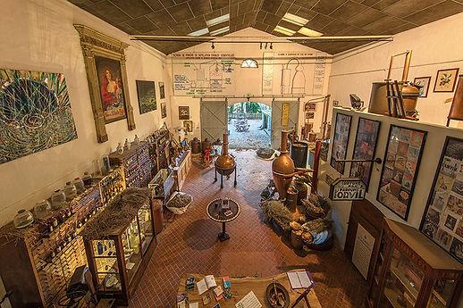 france museum aromatherpie.jpg