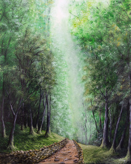 Deep Forest Path