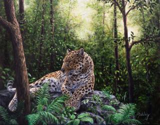Leopard in the Jungle