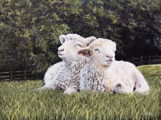 Cotswold Lions