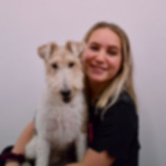 Lucy, Precious Paws Dog Grooming