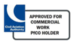 Commercial Recommendation (PfCO)