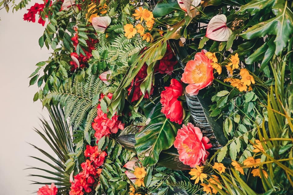 river-and-eve-flora-tropical-events-flow