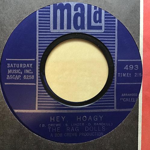 THE RAG DOLLS - MALA 45 Record 493 - DUSTY / Hey Hoagy 1964 EX Condition