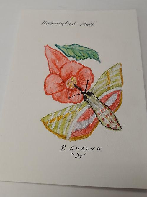 Hummingbird Moth Original Art Card #10