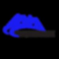 PPMM Logo Blue & Black - no background.p