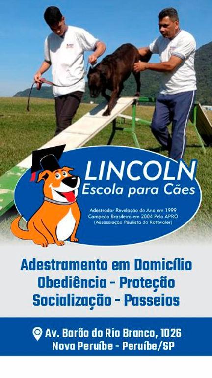 Lincoln_Escola_para_Cães-02.jpg