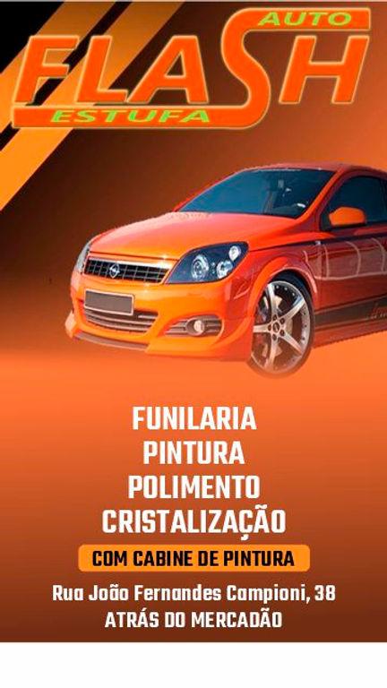 Flash Auto Estufa-02.jpg