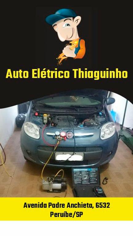 Auto_Elétrico_Thiaguinho-02.jpg