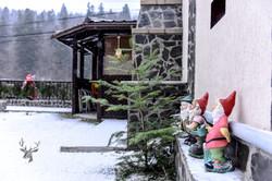 Pensiunea_noni_azuga_iarna.jpg
