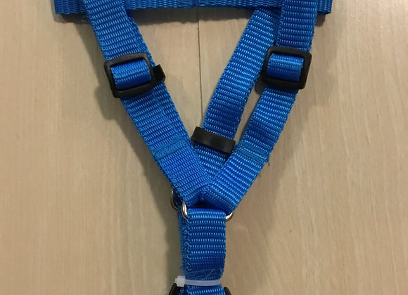 Harness - blue