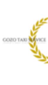 GOZO TAXI SERVICE