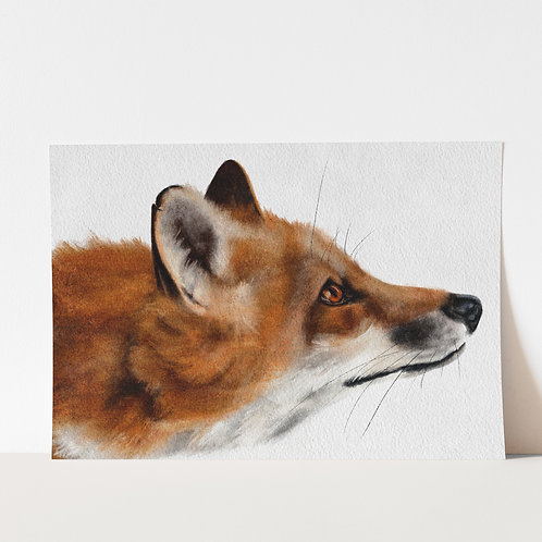 Fox painting limited edition print