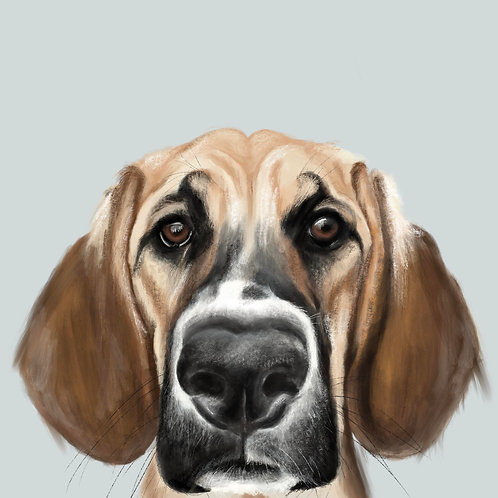Bespoke Digital Pet Portrait