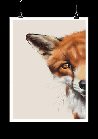 Cute fox painting