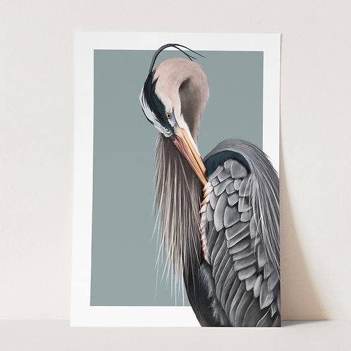 Grey Heron Limited Edition Print