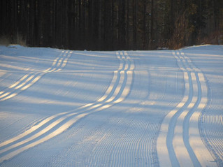 Fresh Groomed Corduroy...  Get Out There !!