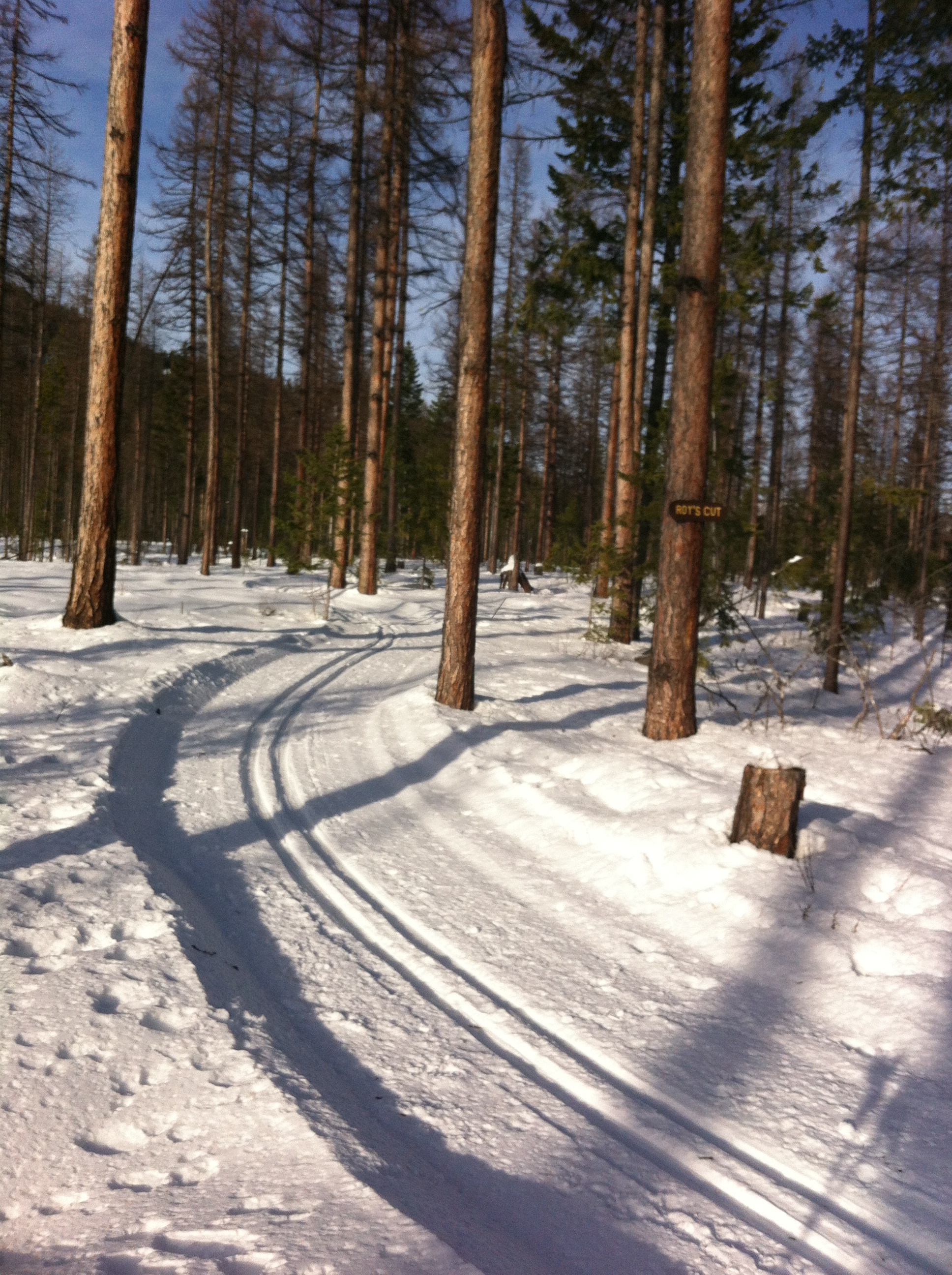 secondary trails