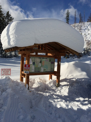 Want snow? We have TONS of snow...100cm. plus in the last week...and just in time for B.C. Family Da