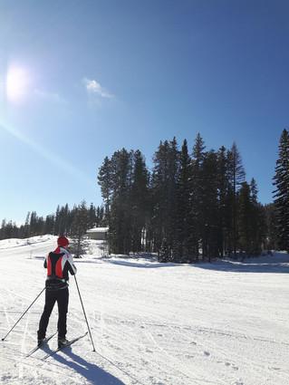 Wonderful, Wonderful Weekend for XC Skiing !