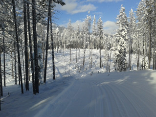 How much snow?...and how beautiful?...only at Kimberley Nordic.