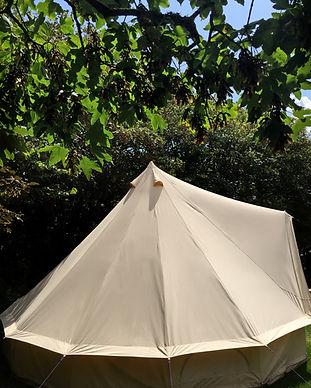 Trewan Hall Campsite