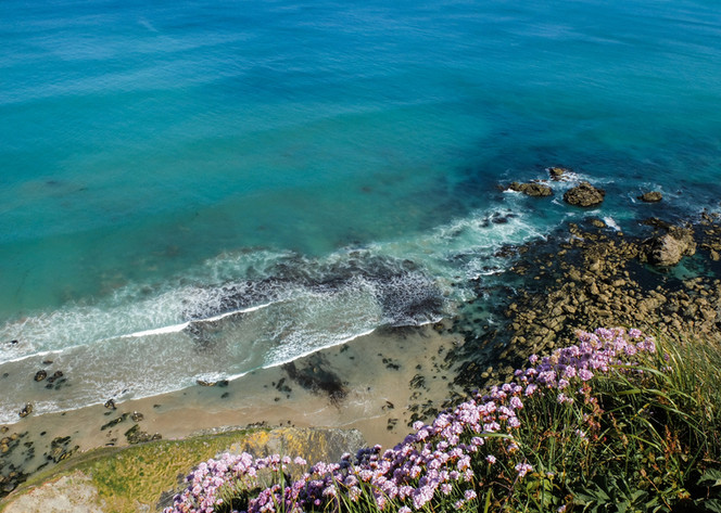 Cornish Cycle Tours, epic coastlines and scenery