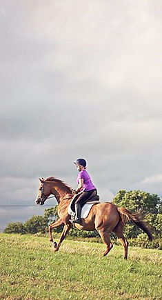 Leah cantering in a Heather Moffett Vogue saddle