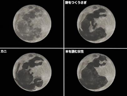 月とうさぎ写真.png