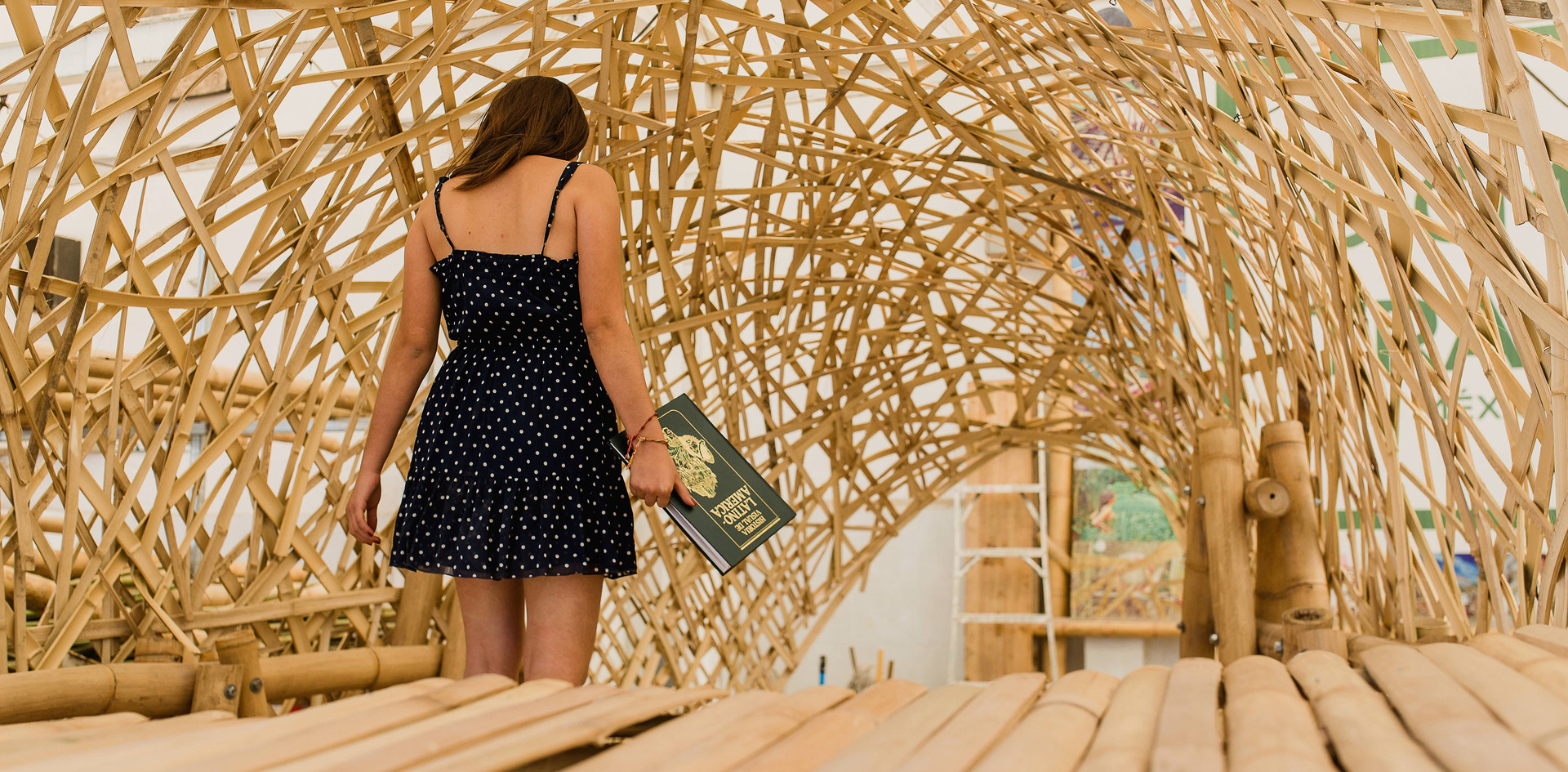 bambú-127.jpg