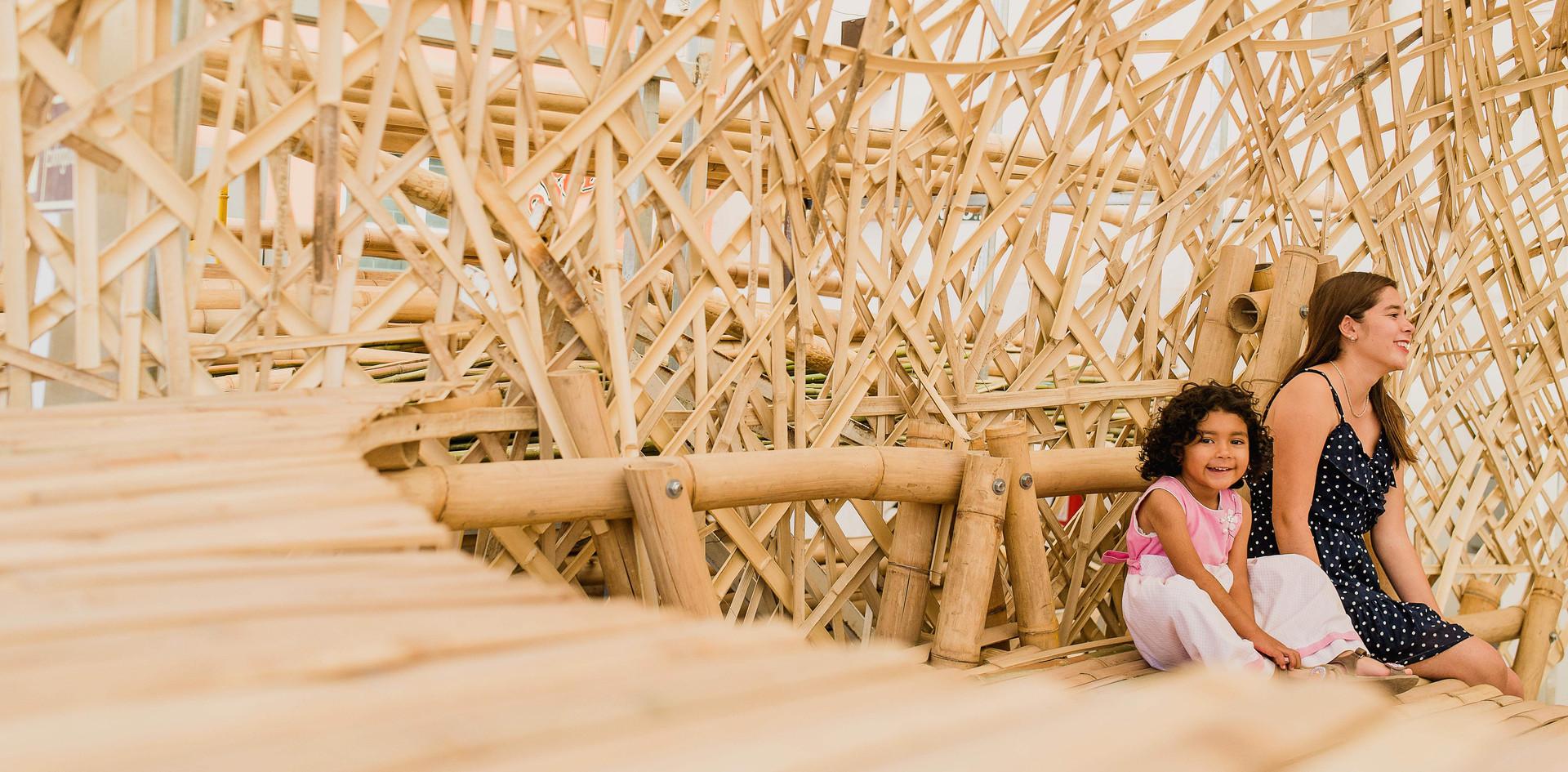 bambú-105.jpg