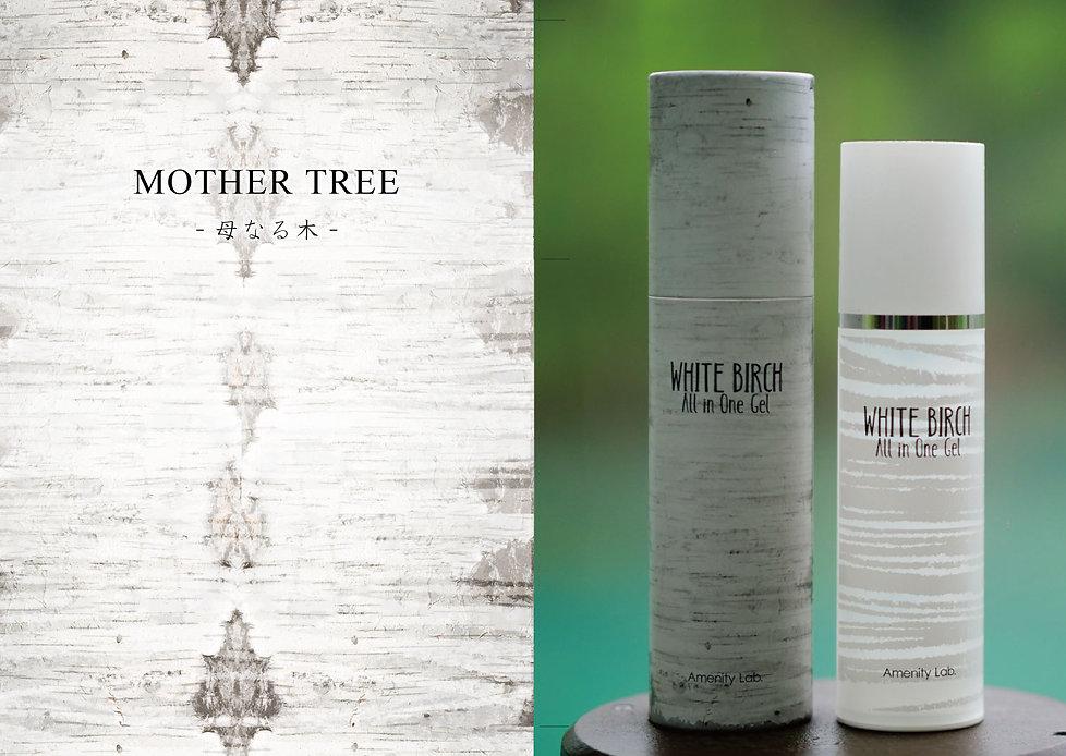 whitebirch-4&5.jpg