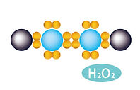 過酸化水素.jpg