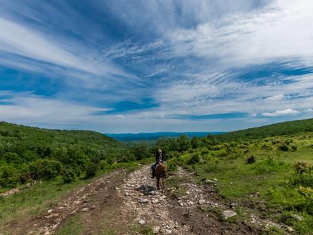 An Appalachian Horseback Riding Adventure