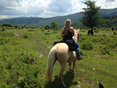 3 Scenic Loops for Horseback Riding in Grayson's High Country