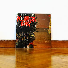 "The Velvoids: Polynesia Baby (Reissue) 12"" LP"
