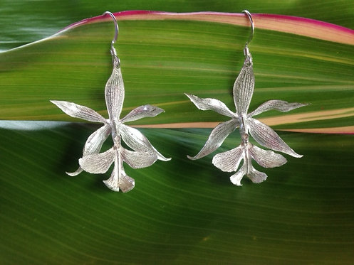 Epidendrum Stamfordianum Orchid Earrings