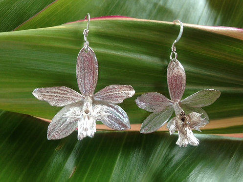 Epidendrobium Earrings