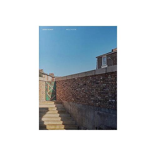 David Adjaye / Mole House