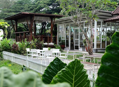 Where to Eat in Malang