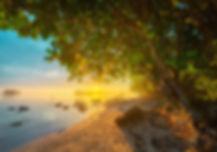 Sunset_rise scenic sunrise artistic.jpg