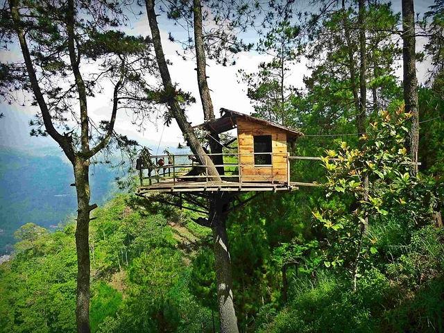 Wood Treehouse.jpeg
