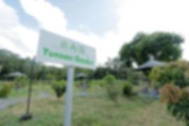 bintan-lohas-garden